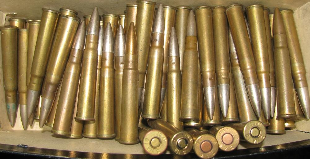 303 Ammo
